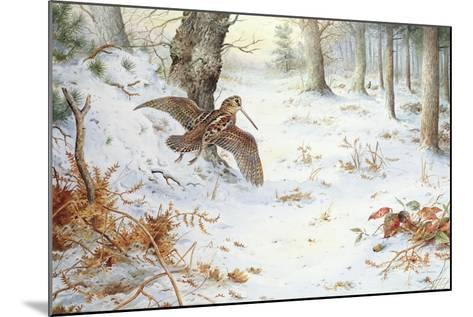 Snipe in Wooded Landscape-Carl Donner-Mounted Giclee Print