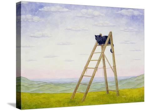 The Ladder Cat-Ditz-Stretched Canvas Print