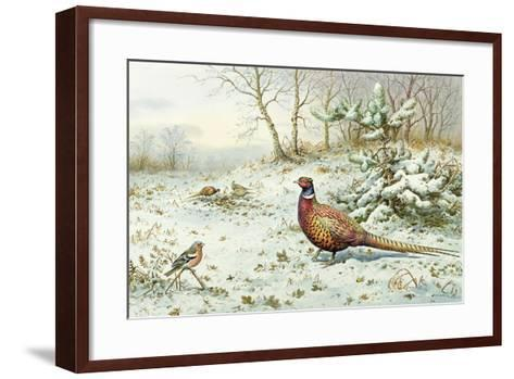 Cock Pheasant and Chaffinch-Carl Donner-Framed Art Print
