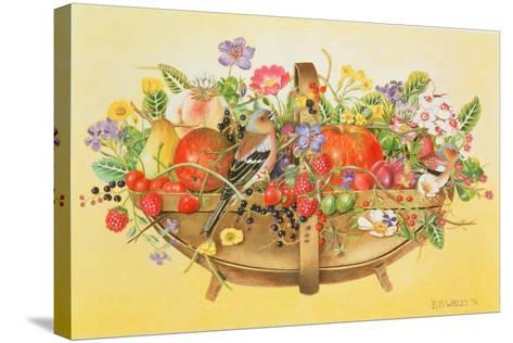 Trug with Fruit, Flowers and Chaffinches, 1991-E.B. Watts-Stretched Canvas Print