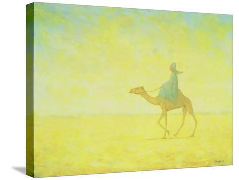 The Journey, 1993-Tilly Willis-Stretched Canvas Print