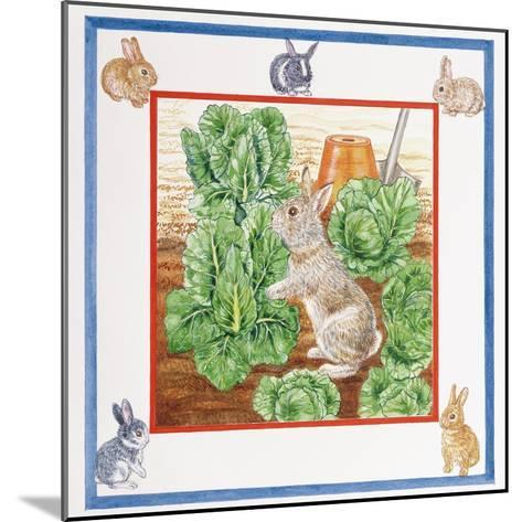 A Rabbit in the Cabbage Patch-Catherine Bradbury-Mounted Giclee Print