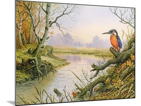 Kingfisher: Autumn River Scene-Carl Donner-Mounted Giclee Print