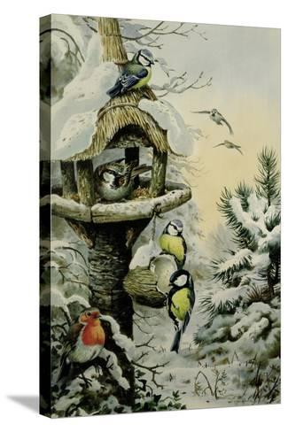 Winter Bird Table with Blue Tits, Great Tits, House Sparrows and a Robin-Carl Donner-Stretched Canvas Print