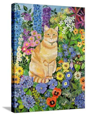Gordon's Cat, 1996-Hilary Jones-Stretched Canvas Print