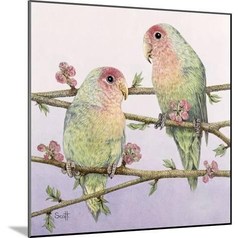 Love Birds-Pat Scott-Mounted Giclee Print