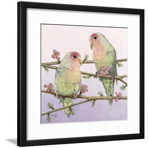 Love Birds-Pat Scott-Framed Art Print