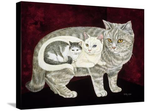 Russian Cat-Ditz-Stretched Canvas Print
