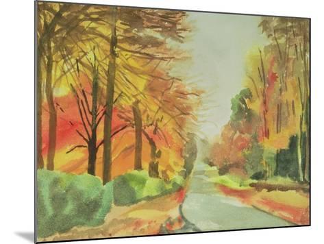 No.47 Autumn, Beaufays Road, Liege, Belgium-Izabella Godlewska de Aranda-Mounted Giclee Print