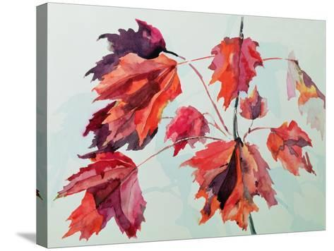No.24 Autumn Maple Leaves-Izabella Godlewska de Aranda-Stretched Canvas Print