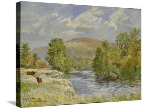 River Spey, Kinrara, 1989-Tim Scott Bolton-Stretched Canvas Print