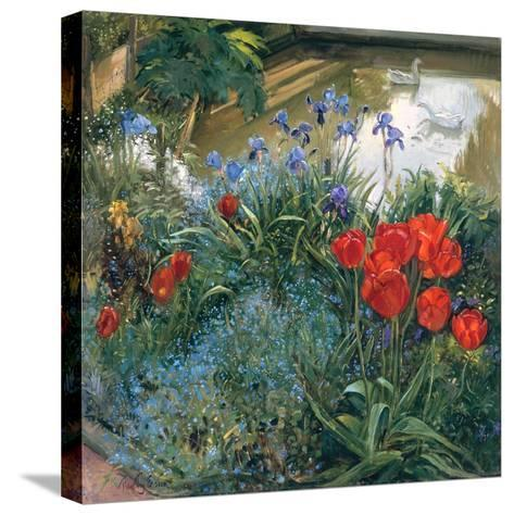 Red Tulips and Geese-Timothy Easton-Stretched Canvas Print