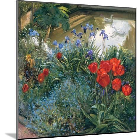 Red Tulips and Geese-Timothy Easton-Mounted Giclee Print