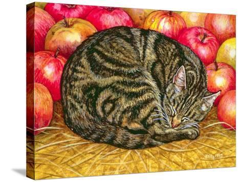 Left-Hand Apple-Cat, 1995-Ditz-Stretched Canvas Print