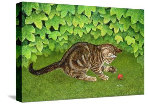 The Strawberry-Kitten, 1996-Ditz-Stretched Canvas Print