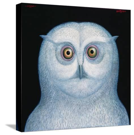 Great White Owl, 1996-Tamas Galambos-Stretched Canvas Print