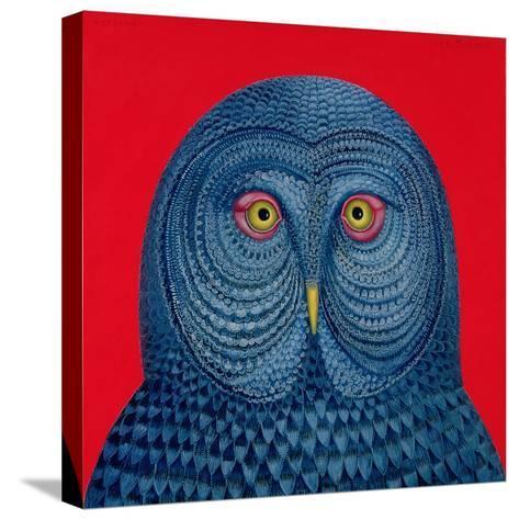 Blue Owl, 1995-Tamas Galambos-Stretched Canvas Print