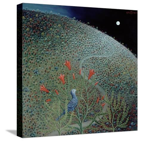 Blue Bird of Happiness, 1995-Tamas Galambos-Stretched Canvas Print