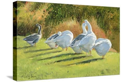 Moat Edge, Bedfield-Timothy Easton-Stretched Canvas Print