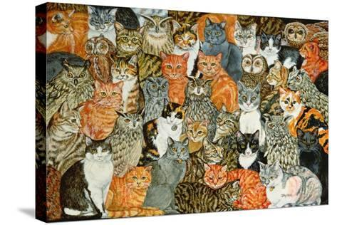 The Owls and the Pussycats-Ditz-Stretched Canvas Print
