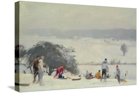 Tobogganing, the Meads, Hertford-Trevor Chamberlain-Stretched Canvas Print