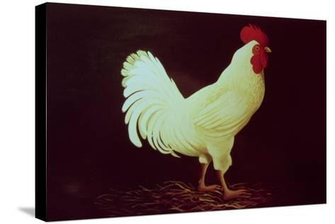 Rooster-Dory Coffee-Stretched Canvas Print