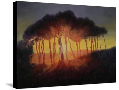 Wild Trees at Sunset, 2002-Antonia Myatt-Stretched Canvas Print