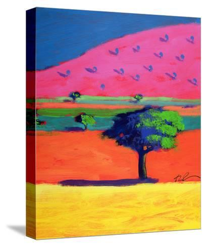 Pink Hill-Paul Powis-Stretched Canvas Print