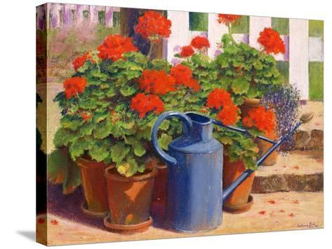 The Blue Watering Can, 1995-Anthony Rule-Stretched Canvas Print