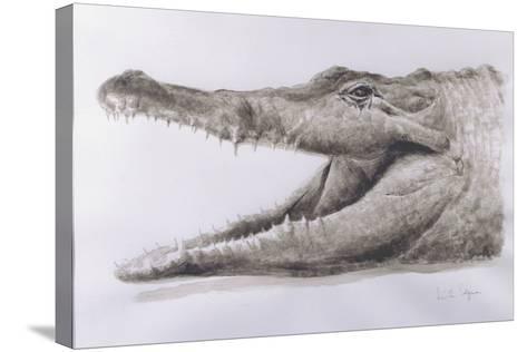 Crocodile, 2005-Lincoln Seligman-Stretched Canvas Print