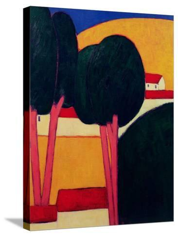 Provencal Farm, 1997-Eithne Donne-Stretched Canvas Print
