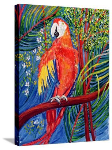 Pretty Polly-Patricia Eyre-Stretched Canvas Print
