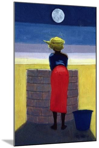 Moonlit Evening, 2001-Tilly Willis-Mounted Giclee Print