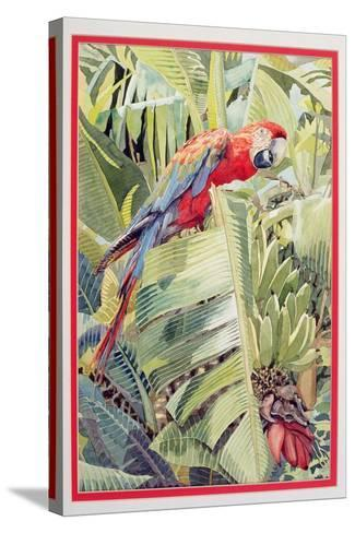 Jungle Parrot-Felicity House-Stretched Canvas Print
