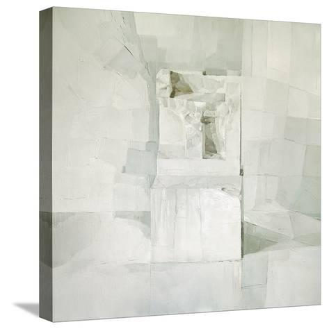 White-Daniel Cacouault-Stretched Canvas Print
