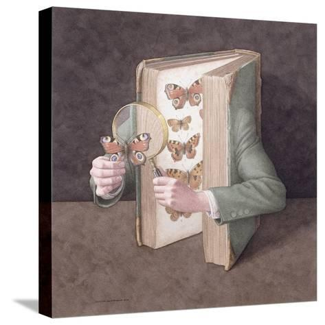 The Collector, 2005-Jonathan Wolstenholme-Stretched Canvas Print
