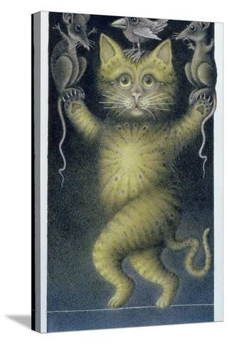 Cat on a Tightrope, Balancing with Bird and Mice-Wayne Anderson-Stretched Canvas Print