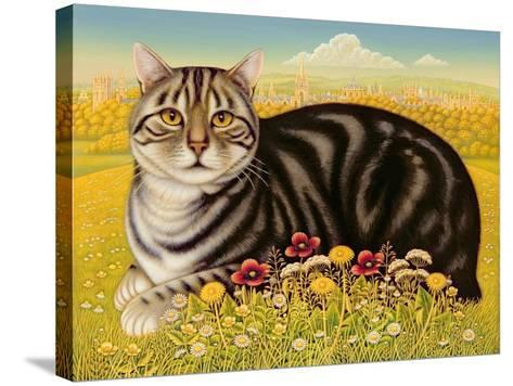The Oxford Cat, 2001-Frances Broomfield-Stretched Canvas Print