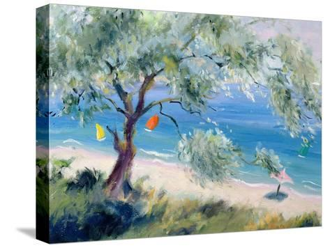 Looking on to a Beach-Anne Durham-Stretched Canvas Print