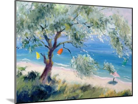 Looking on to a Beach-Anne Durham-Mounted Giclee Print