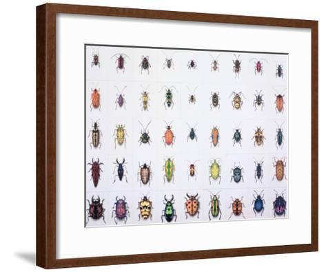 Beetles, 1999-Charlie Baird-Framed Art Print