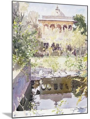 Forgotten Palace, Udaipur, 1999-Lucy Willis-Mounted Giclee Print