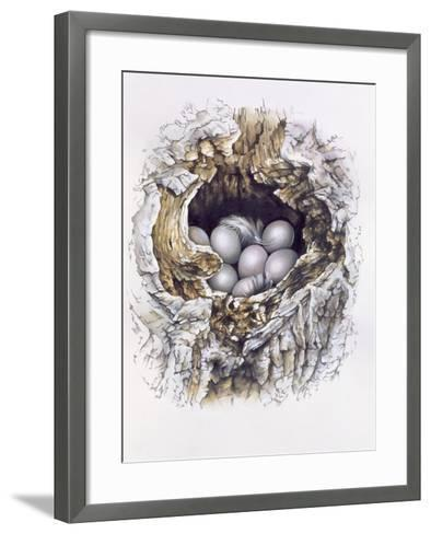 Bubo Bubo (Barn Owl), 2001-Sandra Lawrence-Framed Art Print