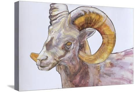 American Long Horn, 2004-Lou Gibbs-Stretched Canvas Print