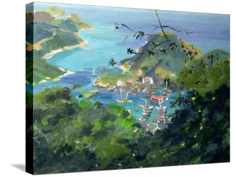 View of Aberdeen from the Peak, Hong Kong-Anne Durham-Stretched Canvas Print