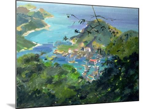 View of Aberdeen from the Peak, Hong Kong-Anne Durham-Mounted Giclee Print