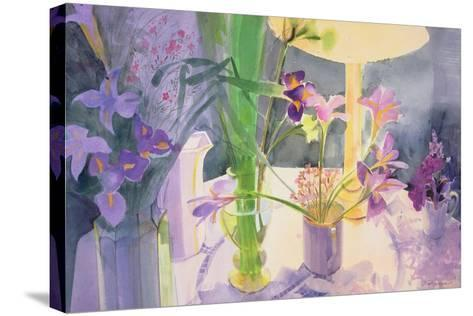 Winter Iris-Claire Spencer-Stretched Canvas Print
