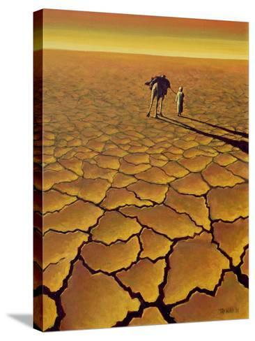 Saharan Journey, 1995-Tilly Willis-Stretched Canvas Print
