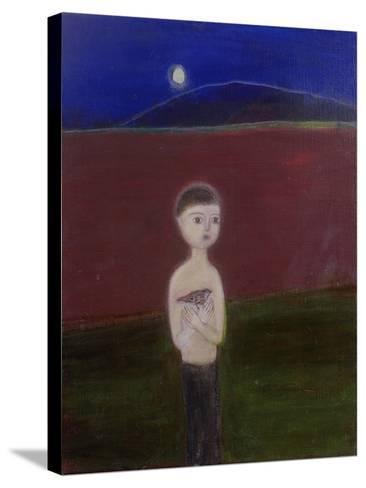 Boy in the Moonlight, 2002-Roya Salari-Stretched Canvas Print