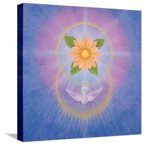 Flower-Simon Cook-Stretched Canvas Print